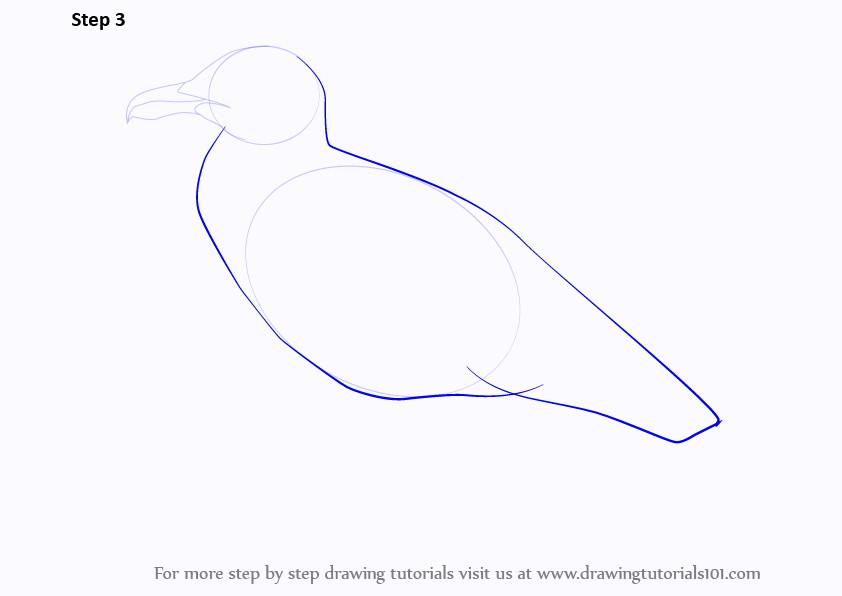 how to draw the wings of a penguin