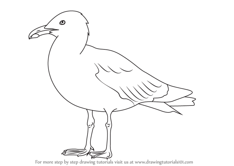 herring coloring pages - photo#24