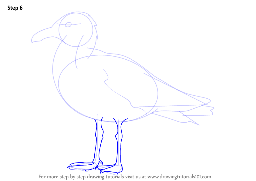 herring coloring pages - photo#36