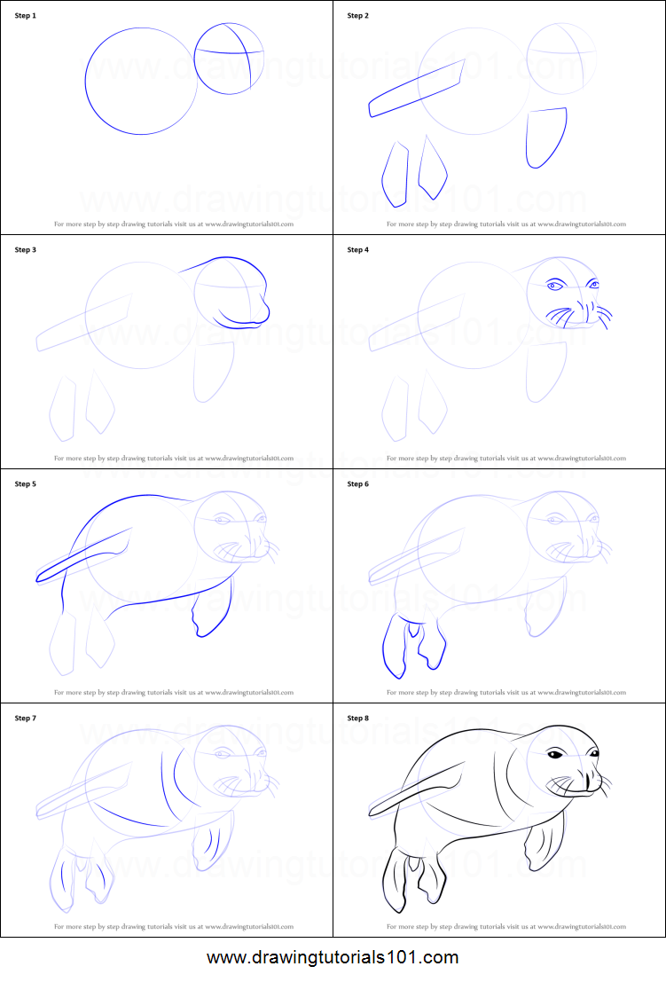 Uncategorized How To Draw A Seal Step By Step how to draw a hawaiian monk seal printable step by drawing sheet drawingtutorials101 com