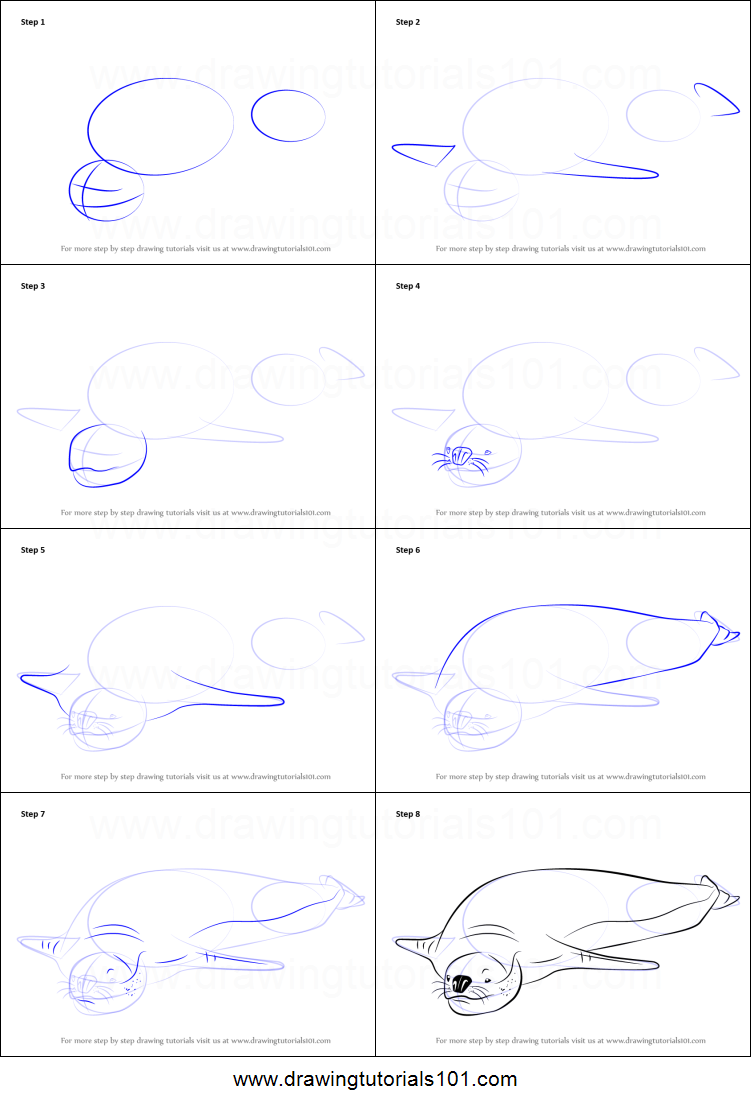 Uncategorized How To Draw A Seal Step By Step how to draw a leopard seal printable step by drawing sheet drawingtutorials101 com