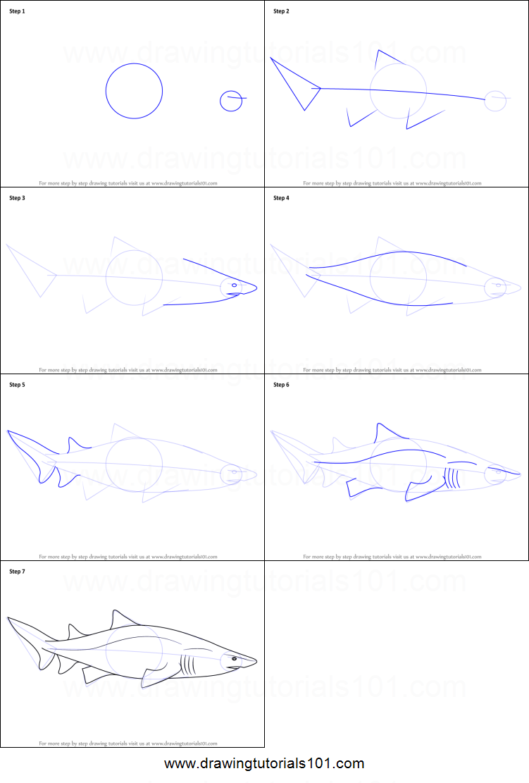 Uncategorized How To Draw A Tiger Step By Step how to draw a sand tiger shark printable step by drawing sheet drawingtutorials101 com