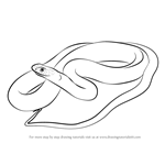 How to Draw a Blue Racer Snake