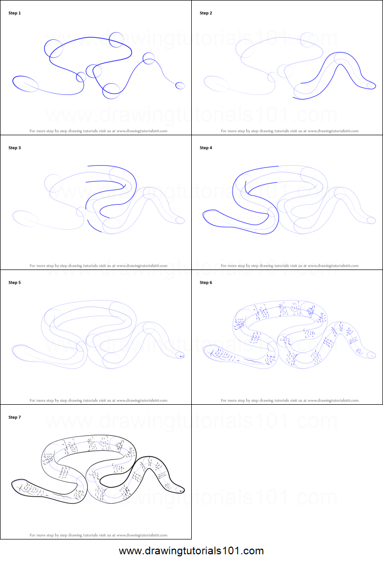 how to draw a leaf scaled sea snake printable step by step drawing