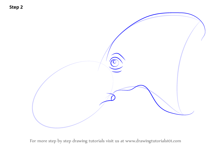 Learn How To Draw A Vampire Squid Squids Step By Step