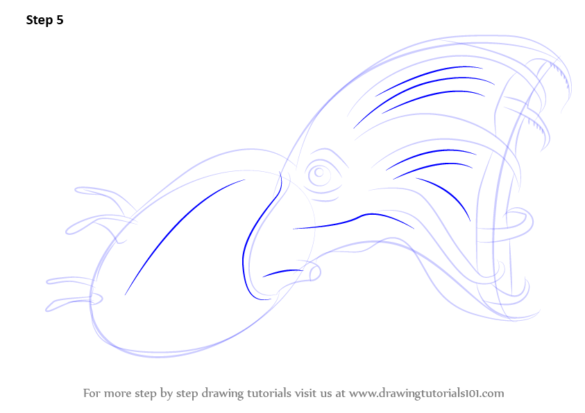 learn how to draw a vampire squid  squids  step by step   drawing tutorials