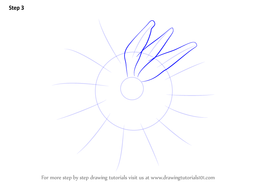Learn How To Draw A Crown Of Thorns Starfish Starfishes Step By