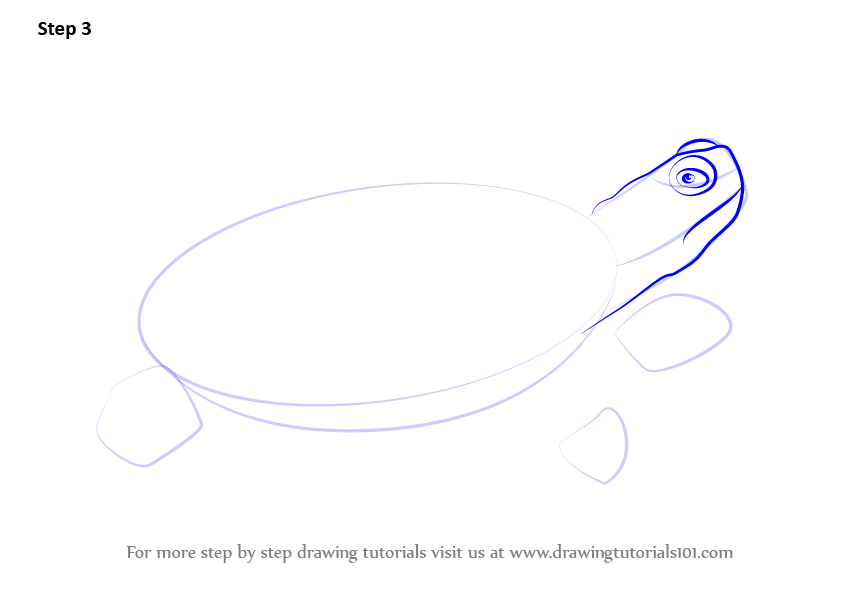 how to draw a turtle on a rock