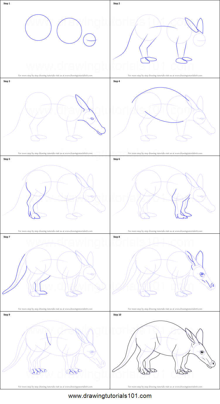 Uncategorized How To Draw An A how to draw an aardvark printable step by drawing sheet drawingtutorials101 com