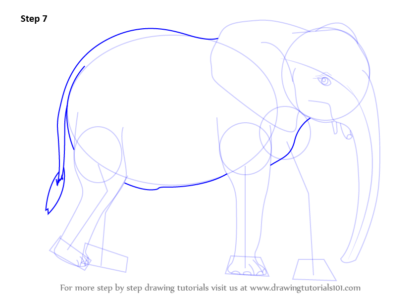 how to draw african animals step by step