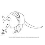 How to Draw a Armadillo