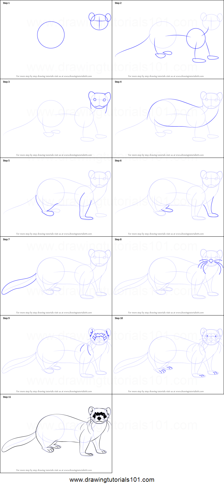 how to draw a fire ferret