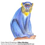 How to Draw a Blue Monkey