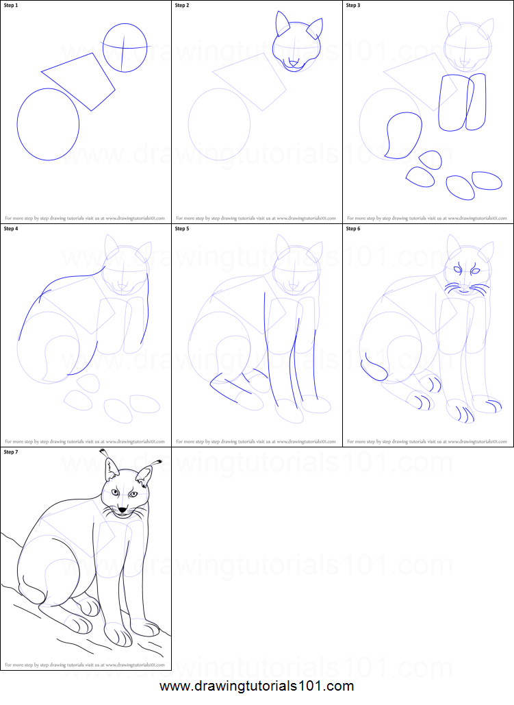 How to draw a eurasian lynx printable step by step drawing for How to make doodle art