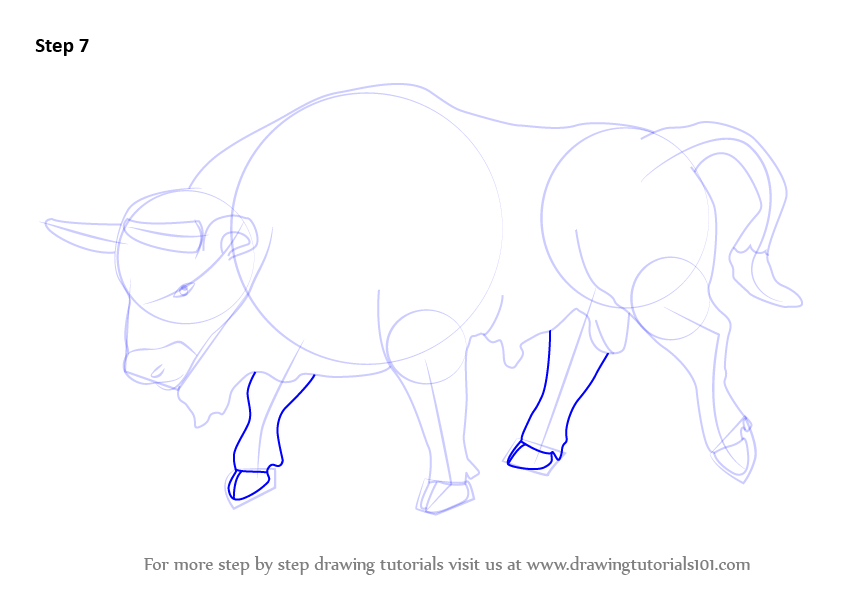 how to draw a bison step by step