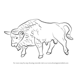 How to Draw a European-Bison