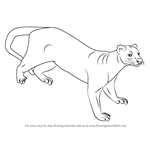 How to Draw a Fossa