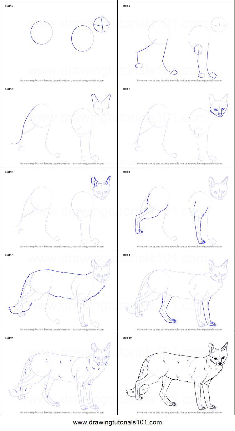 How To Draw A Gray Fox How To Draw Howling Wolves, Howling Wolf Step 9