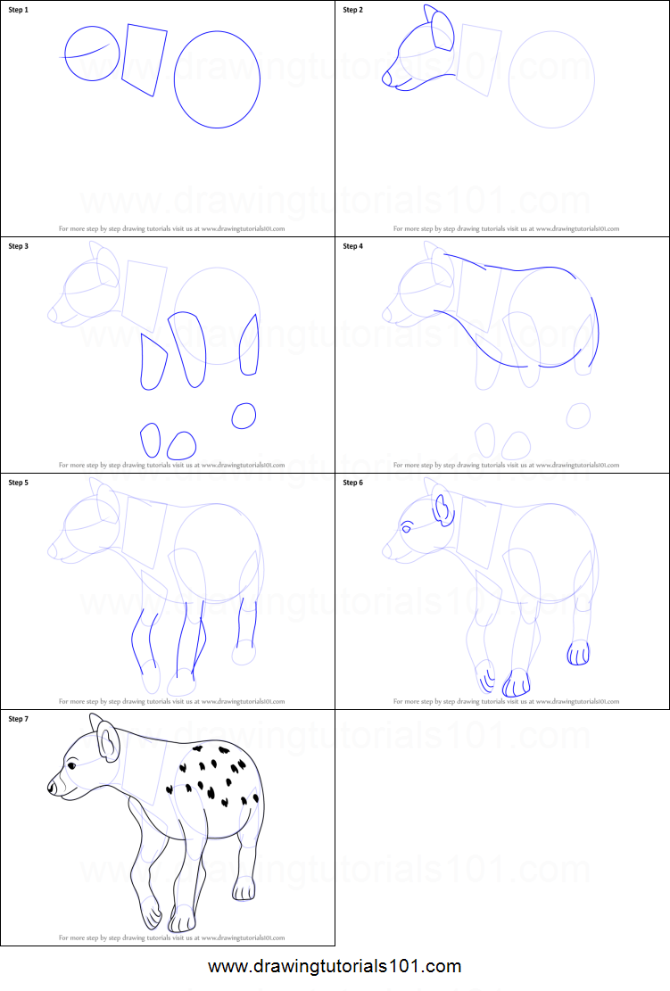 How to draw a hyena printable step by step drawing sheet for How to make doodle
