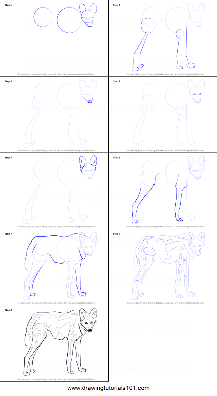 How to Draw a Maned Wolf printable step by step drawing ...