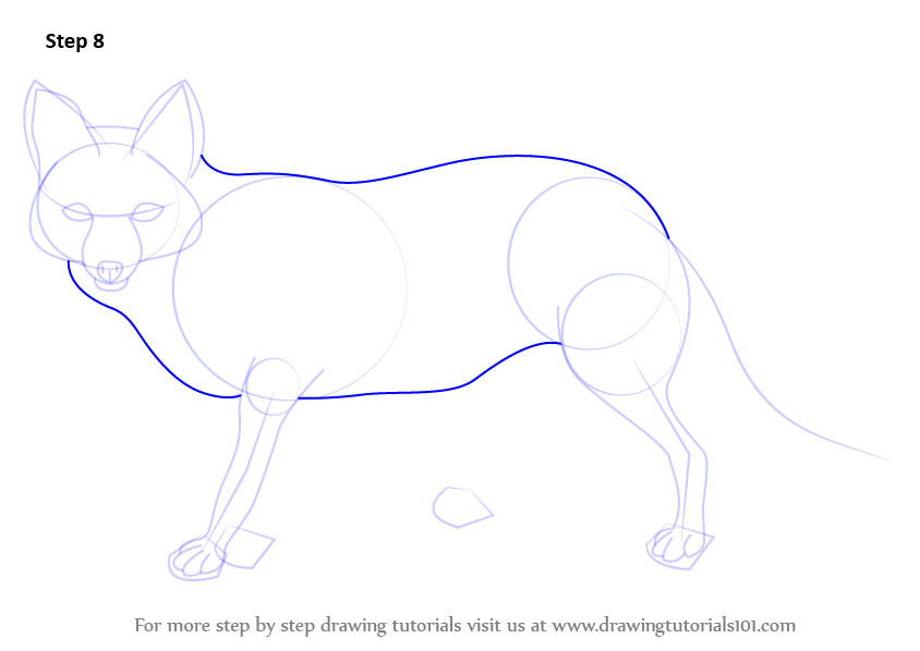 how to draw a red fox step by step