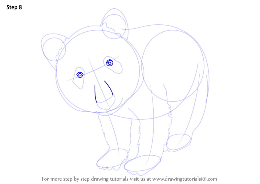 panda drawing step by step - photo #13