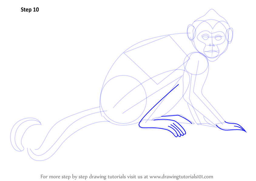 how to draw a sock monkey step by step
