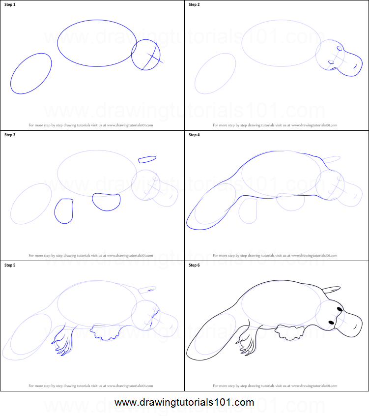 ... printable step by step drawing sheet : DrawingTutorials101.com Pencil Drawing Pictures Of Flowers