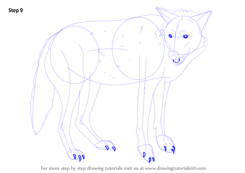 how to draw wolf eyes step by step