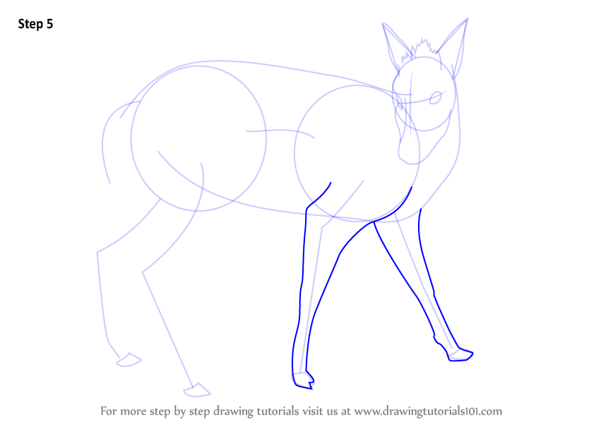 Step by step how to draw a tufted deer for How to draw a deer step by step