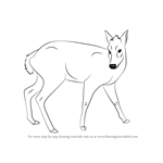 How to Draw a Tufted Deer