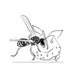 How to Draw Wasp Eating Honey