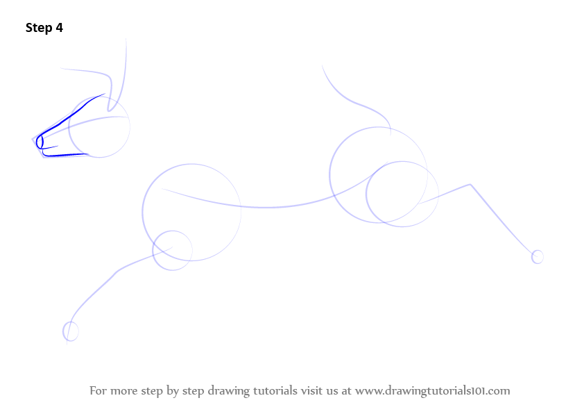 Learn How To Draw A White
