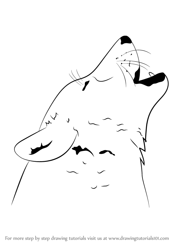Learn how to draw a wolf howling wild animals step by step drawing tutorials