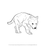 How to Draw a Wolf Pup