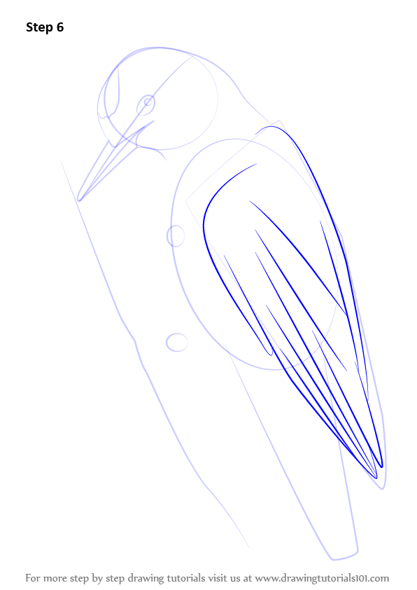 how to draw a feather step by step