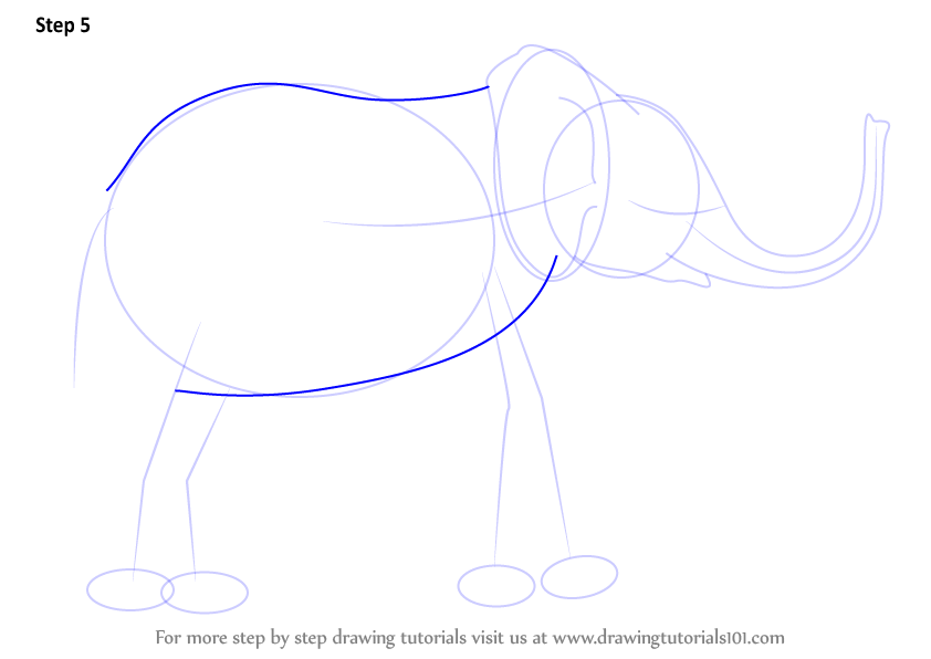 how to draw a baby elephant step by step