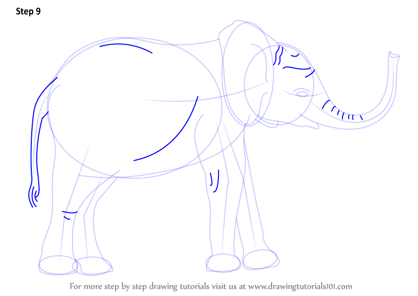 how to draw a henna elephant step by step
