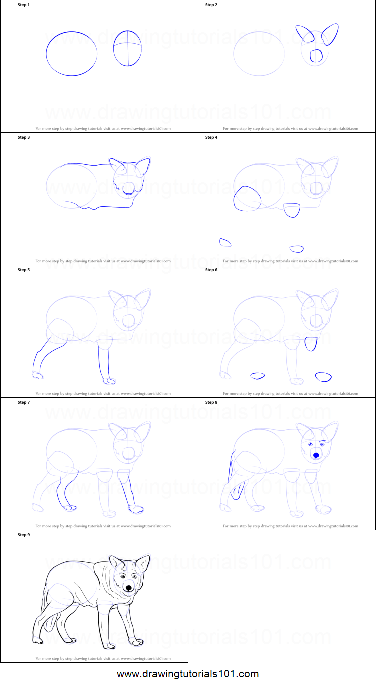 how to draw a wolf printable step by step drawing sheet