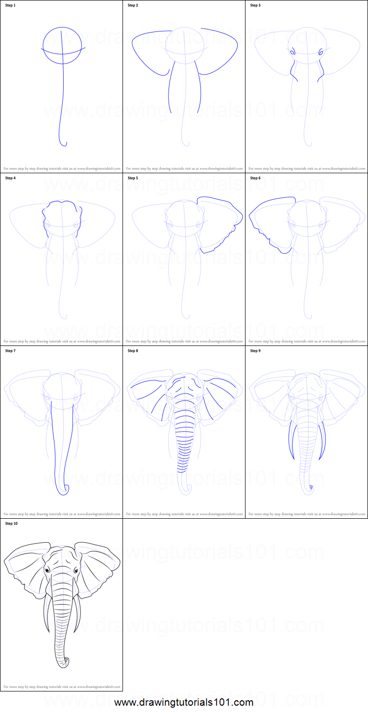 How to Draw an Elephant Head printable step by step ...