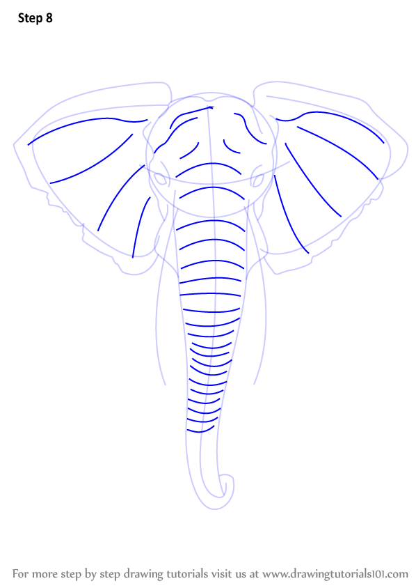Learn How To Draw An Elephant Head Zoo Animals Step By Step