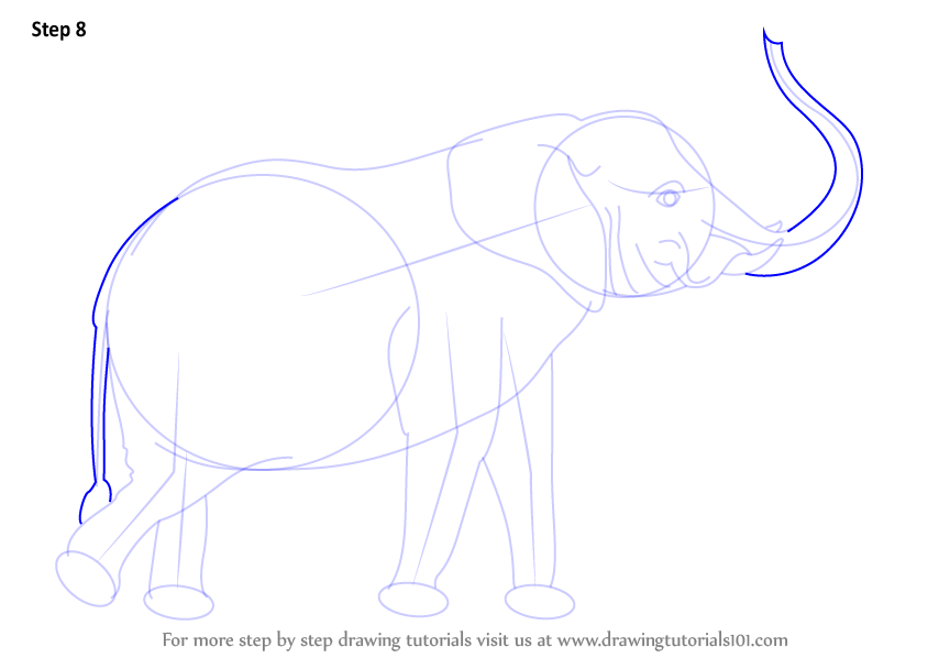 How To Draw Elephant Easily Step By Step
