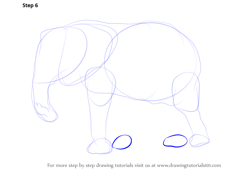 how to draw a elephant face step by step