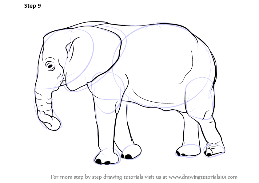 Step by Step Drawing tutorial on How to Draw an Elephant How To Draw A Train For Kids Step By Step