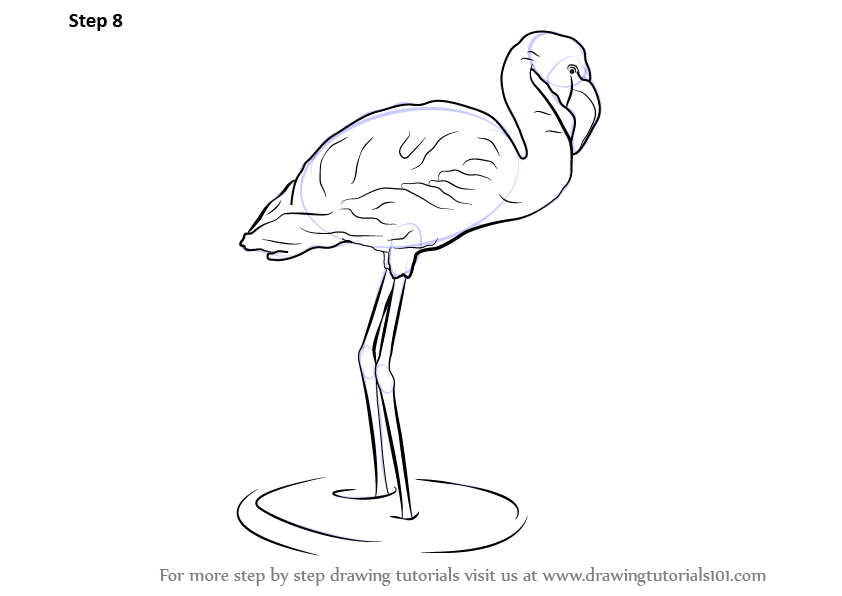 How To Draw A Flamingo as well How To Draw Lapis Lazuli From Steven Universe together with Scroll 20clipart 20fancy also Schmetterling Tribal 2 in addition Drawing Anime Naruto Chibi How To Draw Naruto Naruto Shippuden Youtube. on pencil pink