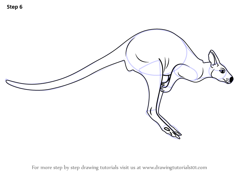 Kangaroo Feet Drawing additionally  likewise Chicken Coop further Coloring Cars as well Preschool Kids Drawing Crown Coloring Pages. on how to draw a goose
