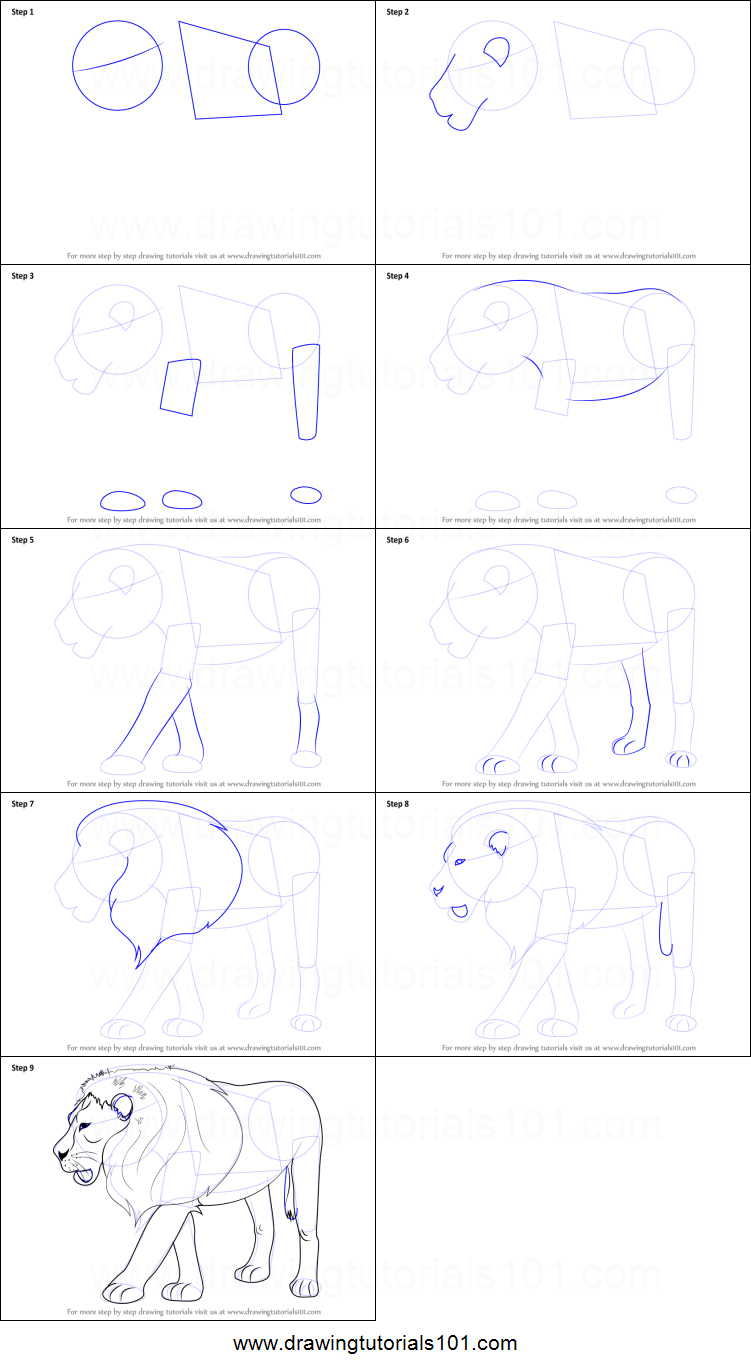 How To Draw A Lion Printable Step By Step Drawing Sheet