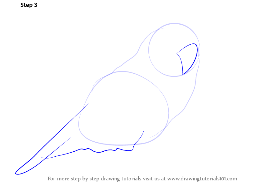 how to create a figure drawing Follow these steps to create drawings using pencil, variable width, and brush tools with adobe animate cc animate cc learn & support get started user guide tutorials free trial draw lines & shapes with adobe these shapes unlike the shapes you create using object drawing mode.