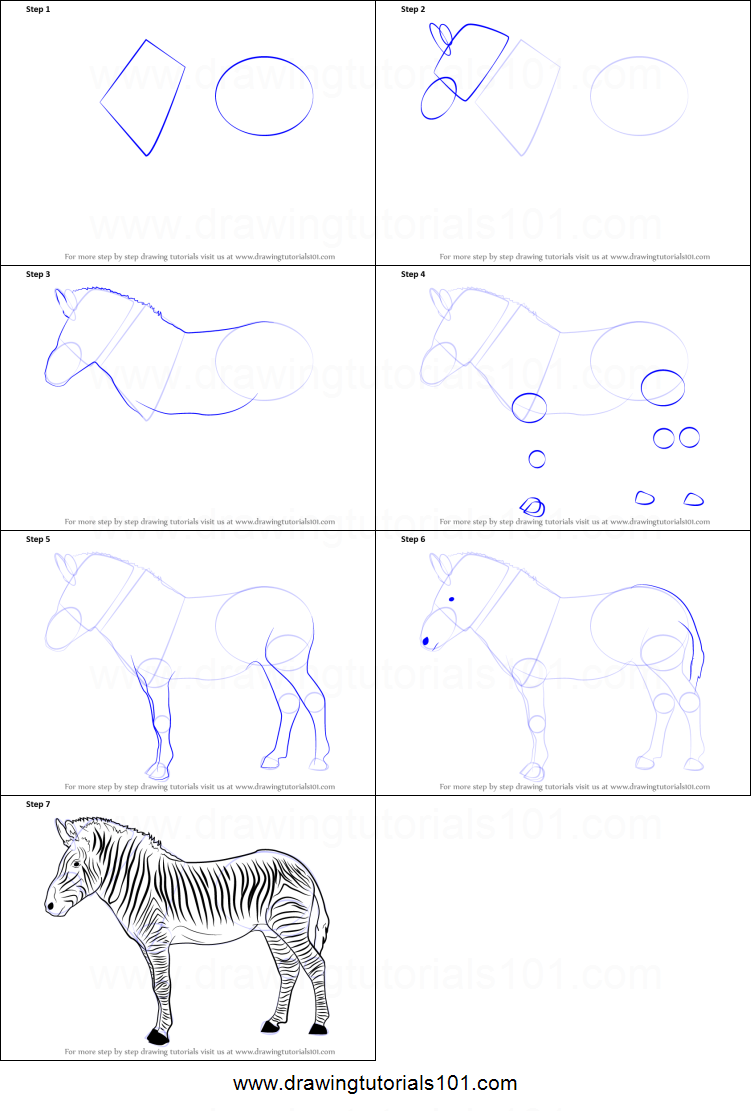 How to Draw a Zebra printable step by step drawing sheet ...