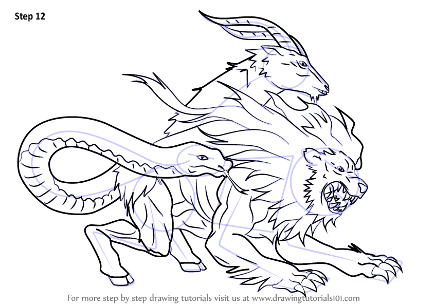 Step by Step How to Draw Chimera